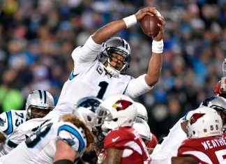 nfc championship game panters 2016 images