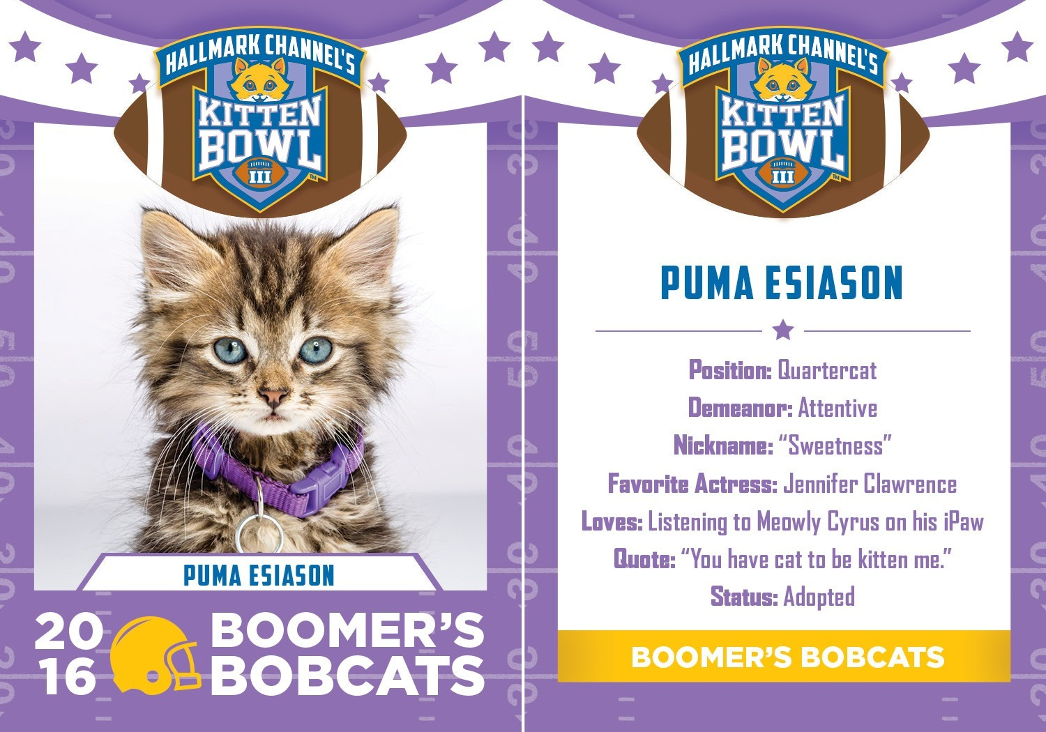 hallmark kitten bowl iii cards puma