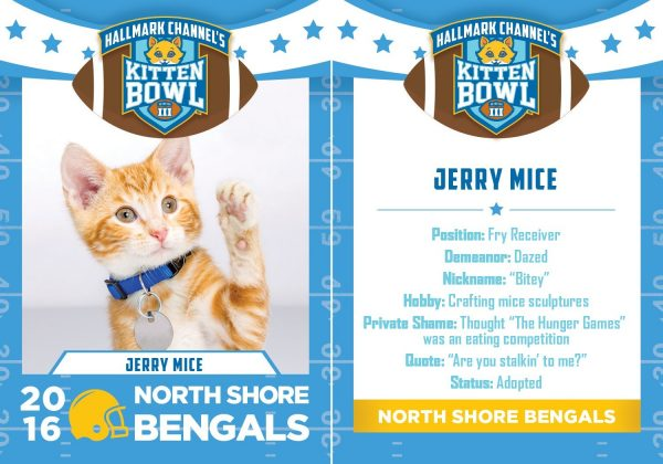 jerry rice up for kitten bowl iii johnny manziel help