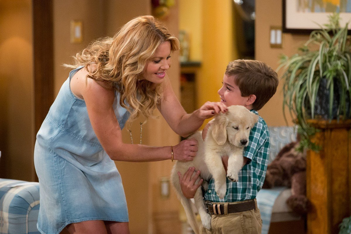 fuller house puppy love