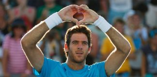 juan martin del potro's winning way resume 2016 imges