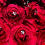 red roses laced with diamonds 2016