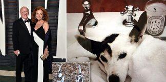 anderson coopers moms cloned love 2016 gossip