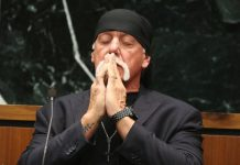 hulk hogan makes sex tape killing but gawker appealling trial ruling 2016 images