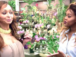 real housewives of potomac fifty sense birthday bashes 2016 images
