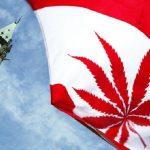 canada legalizing pot 2016 images