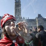 Canadian Marijuana Legislation: Are pot smokers a forest fire risk?