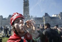 candadian marijuana legalization are pot smokers a forest fire risk 2016 images