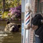 It's a 'Jungle Book' box office weekend biting into 'Barbershop: The Next Cut'