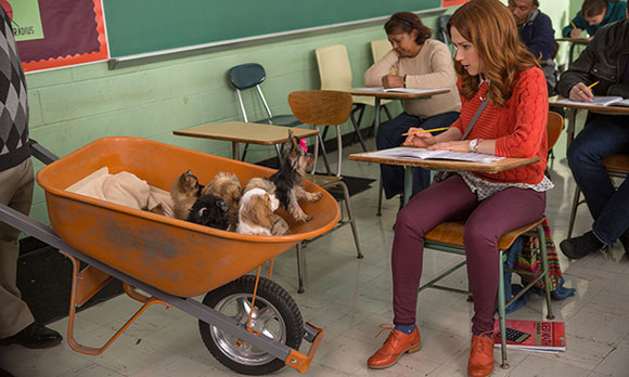 unbreakable kimmy schmidt wheelbarrow of puppies