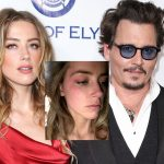 Nia Guzman vs Chris Brown and Amber Heard's Johnny Depp abuse