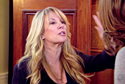 real housewives of new york city berkshires countess fight