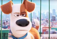 animation rules box office with the secret life of pets leading pack 2016 images
