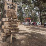 digital detox camp