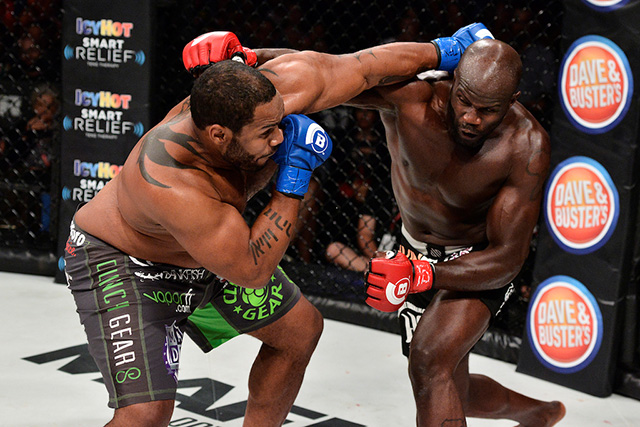 cheick kongo vs tony johnson