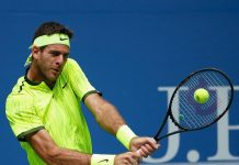 juan martin del potro wins crowd over with dominic thiem win 2016 images