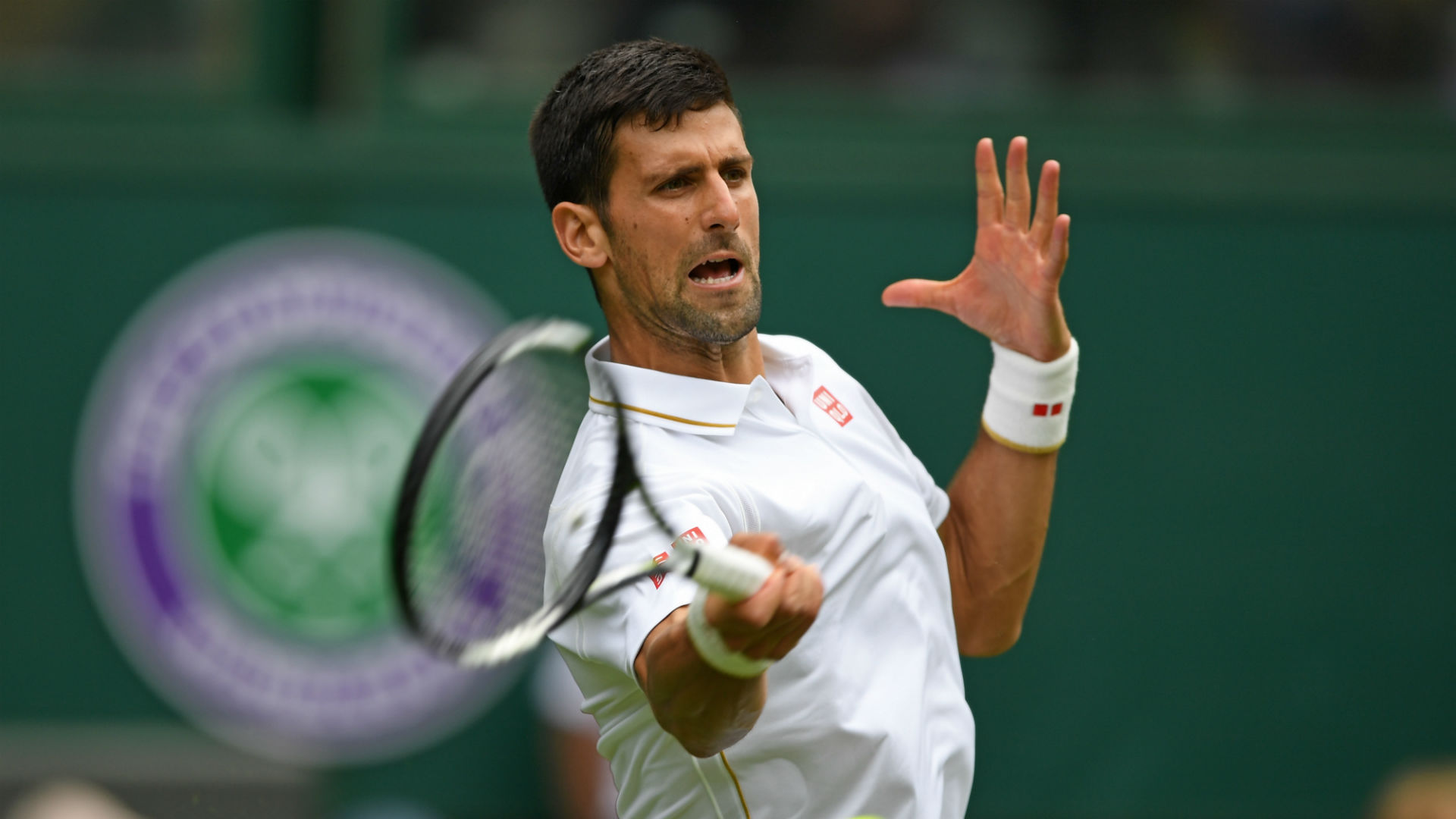 will novak djokovic injury open door for any murray 2016