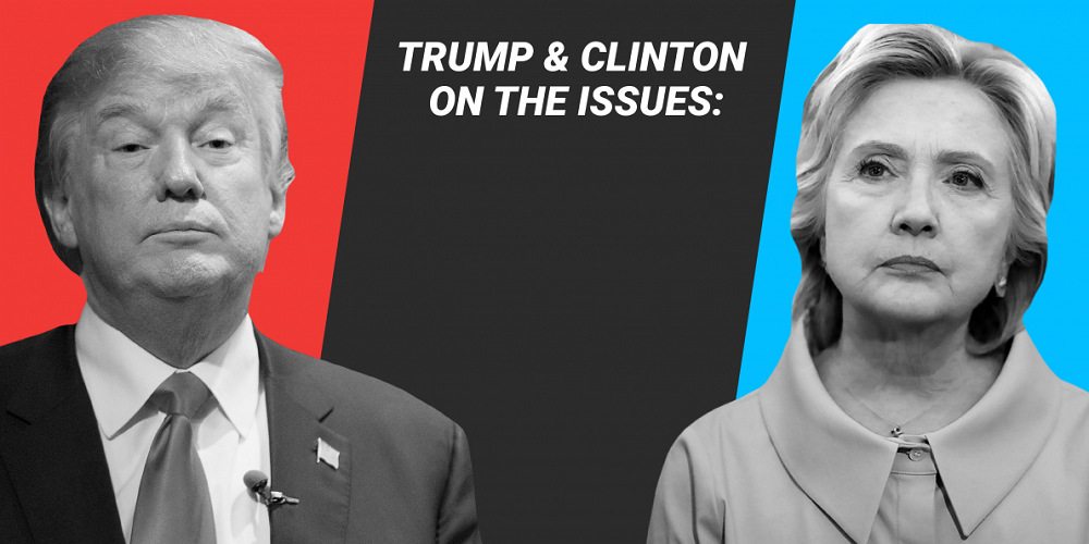 Where Hillary Clinton and Donald Trump stand on the major issues 2016 images
