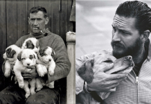 Tom Hardy Will Brave The Antrctic For Ernest Shackleton Biopic 2016 images