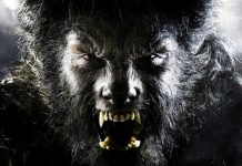 universal proves the wolf man not so expendable 2016 images