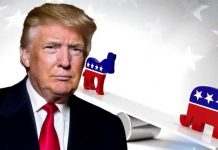 donald trump rigged election ironic given his consultant 2016 images