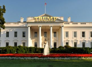 donald trumps road to white house reveals americas true self 2016 images