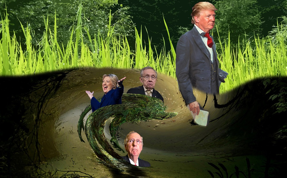 Is Donald Trump really 'draining the swamp' or dipping his toe in? 2016 images
