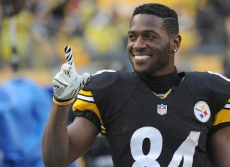 NFL Winners and Losers Week 16 antonio brown fantasy footballs best friend 2016 images
