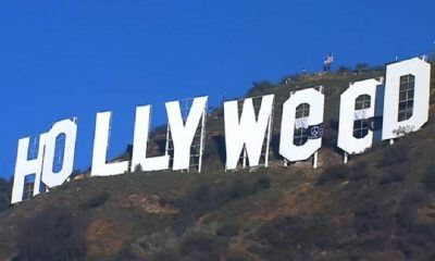 2017 welcomes hollyweed and a mariah carey hangover images