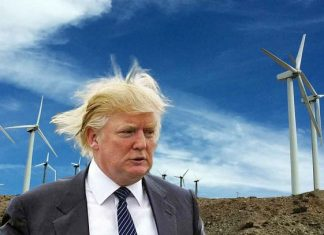 future uncertain for solar and wind power with donald trump 2017 images