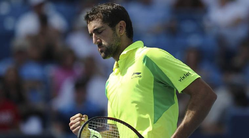 What's Wrong with Marin Cilic? 2017 images