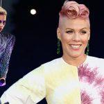 pink not letting social media slam lady gaga