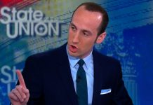 stephen millers latest vote fraud evangelist for donald trump 2017 images
