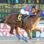 GUNNEVERA kentucky derby picks 2017