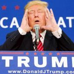 donald trump fake followers gets popular