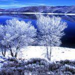 topaz lake carson valley nv