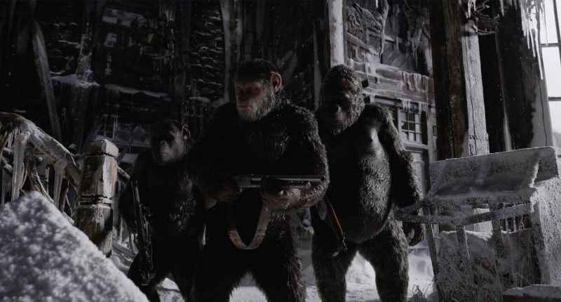war for the planet of the apes gone wild movie