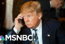 donald trump keeping msnbc ratings high 2017 images