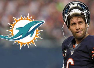 jay cutler lands $10 million one year deal with dolphins 2017 images