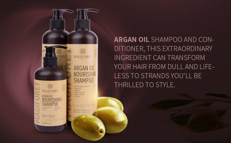 Baebody Moroccan Argan Oil Shampoo holiday gift guide ideas