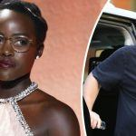 harvey weinstein fights back at lupita nyongo accusation of sexual harassment