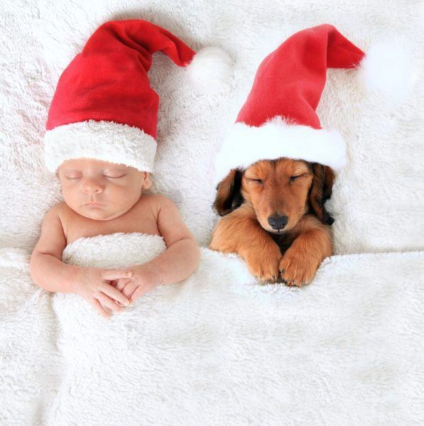 cute baby asleep with santa hat and puppy