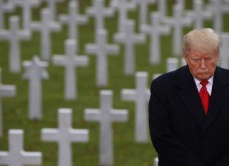 donald trump standing along in paris headstones cemetary