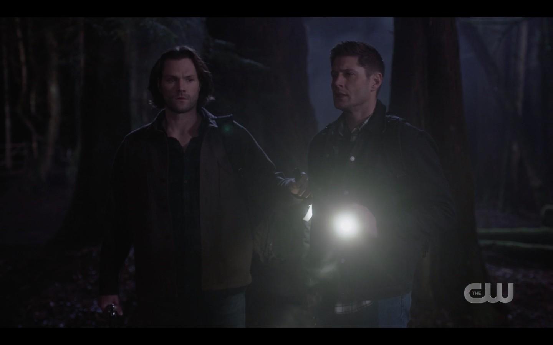 Dean Sam Winchester going into dark woods SPN 1416
