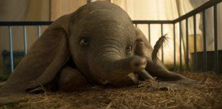 disneys dumbo flies low at box office plus an unplanned surprise 2019 images