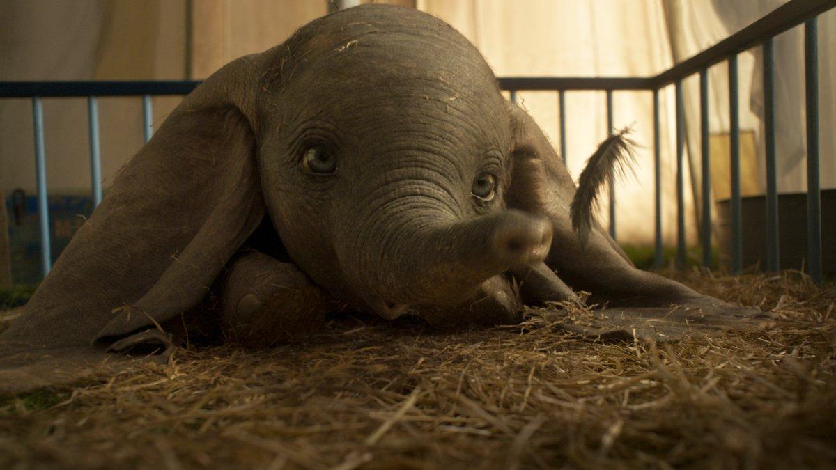 disneys dumbo flies low at box office plus an unplanned surprise 2019 images