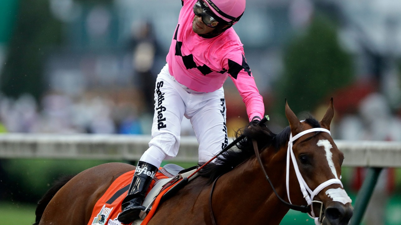 no preakness for maximum security or luis saez 2019 images