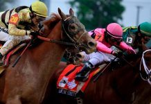 preakness 2019 mark casse wins triple crown race with war of will 2019 images