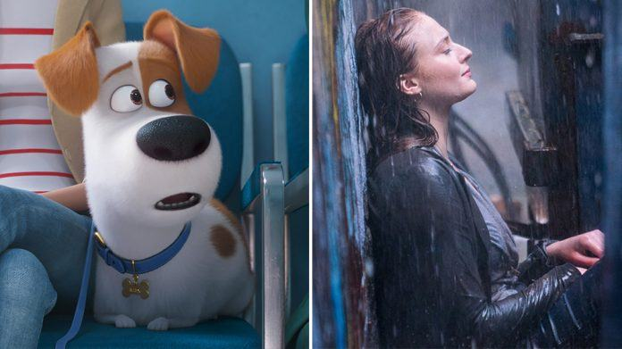 secret life of pets 2 vs dark phoenix box office 2019 images