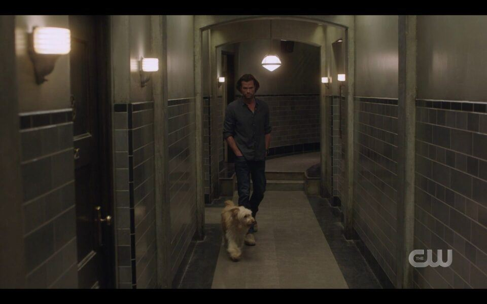 SPN Sam Winchester walking with Miracle down halls of bunker